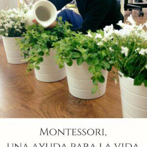 Montessori, una ayuda para la vida (mini e-book)